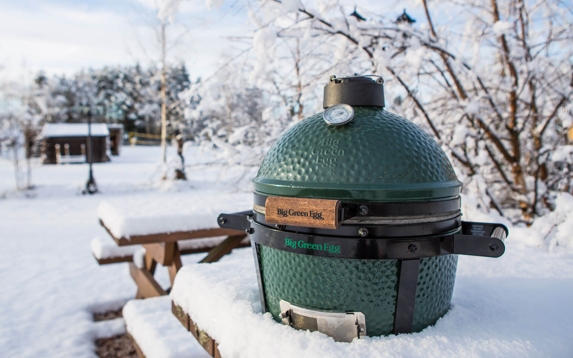 BigGreenEgg_04